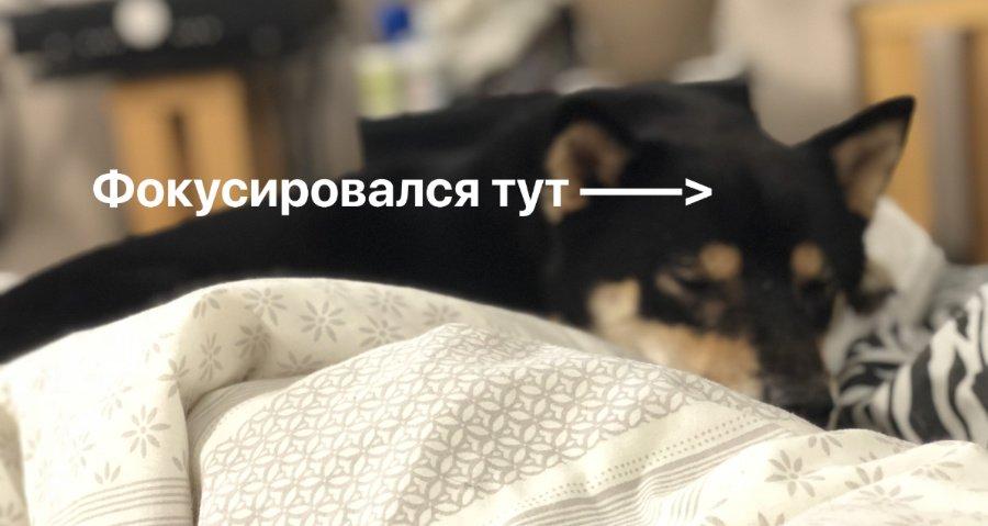 камера iphone x в портретном режиме не фокусируется на объекте