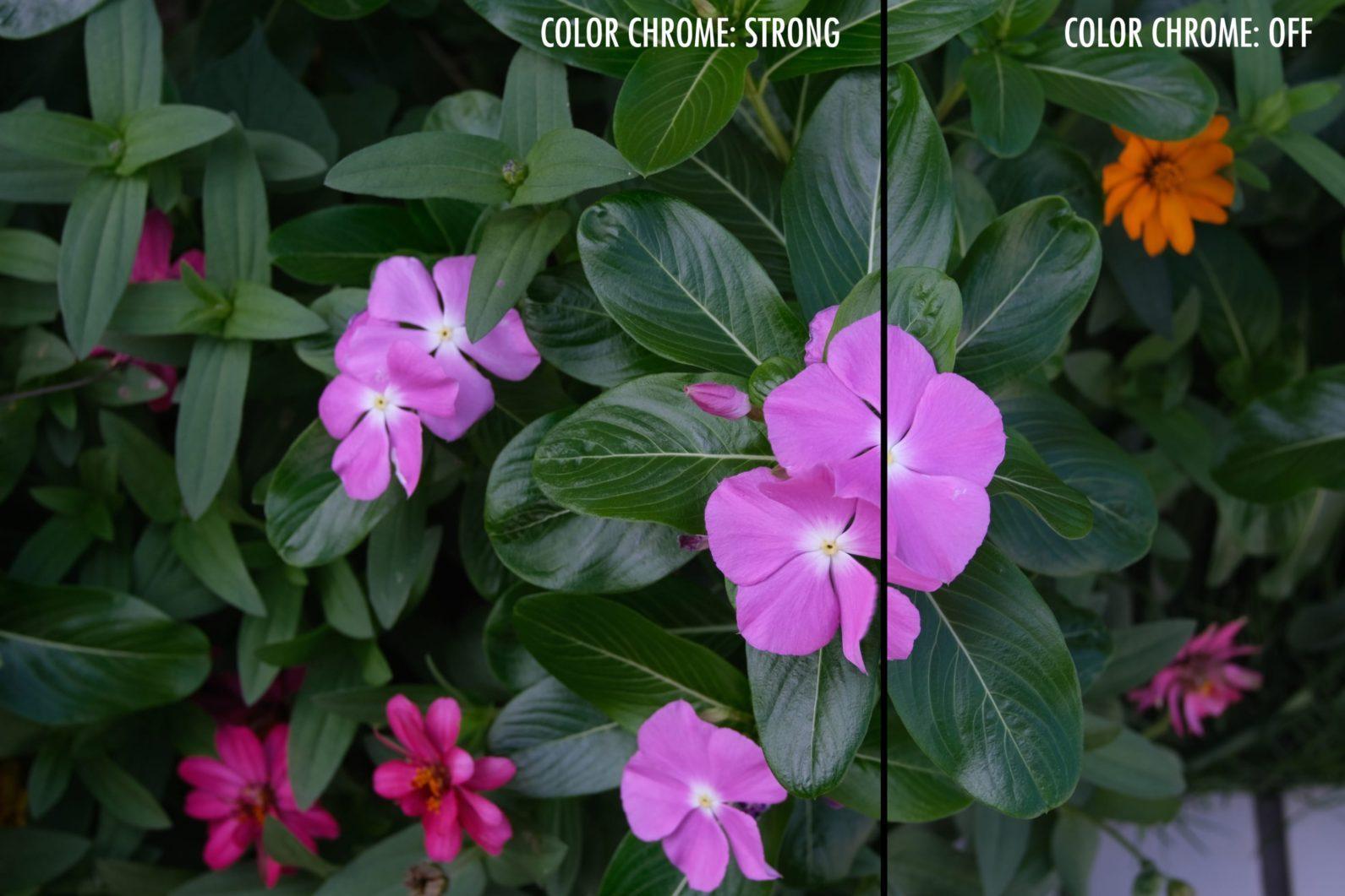 пример работы с color chrome в камере XT-3